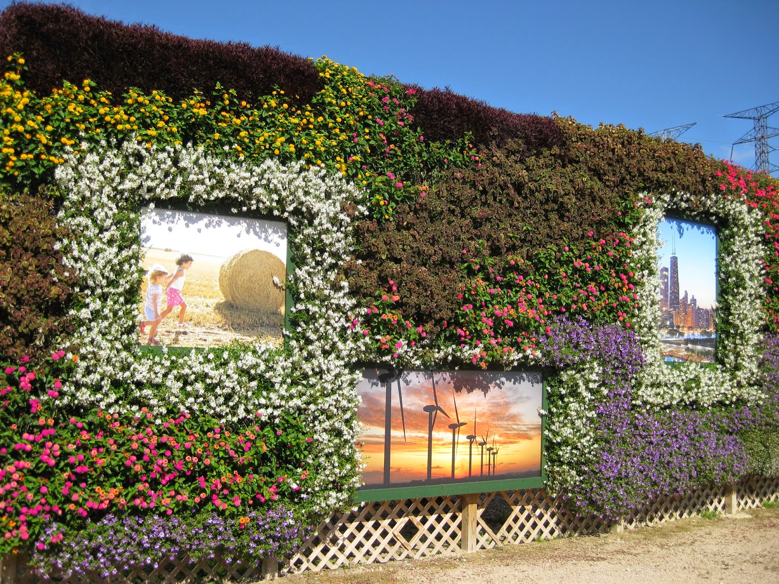 Extreme Vertical Gardening - Rotary Botanical Gardens
