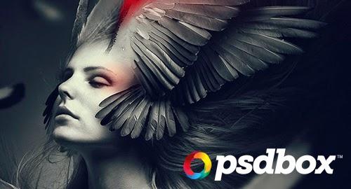 psdbox