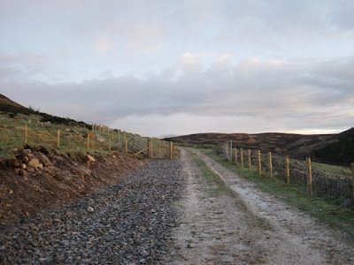 Deeside Walks: the path leads from Lary car park towards Morven