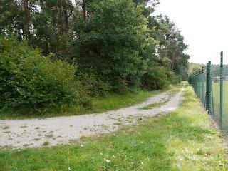 Oppidum Manching Bild 10: Weg entlang des Walls beim ehemaligen Osttor
