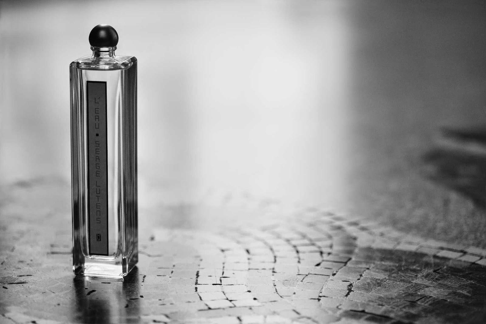 http://poivrebleu.com/2009/11/27/serge-lutens-anti-parfum-eau-propre-hyperfonction/