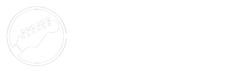 Marcelo Donati Blog