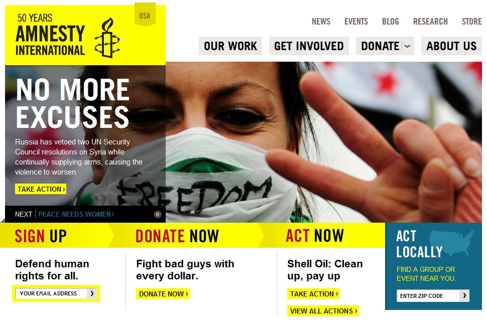 Amnesty international essays