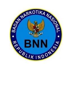 Lowongan CPNS Badan SAR Nasional