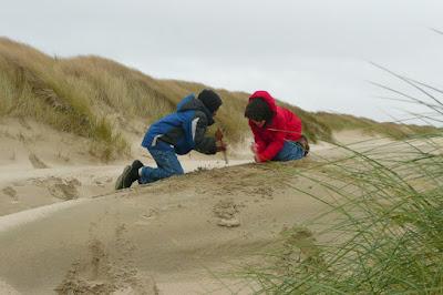 Oregon Dunes, Lane County, Beach Grass, South Jetty