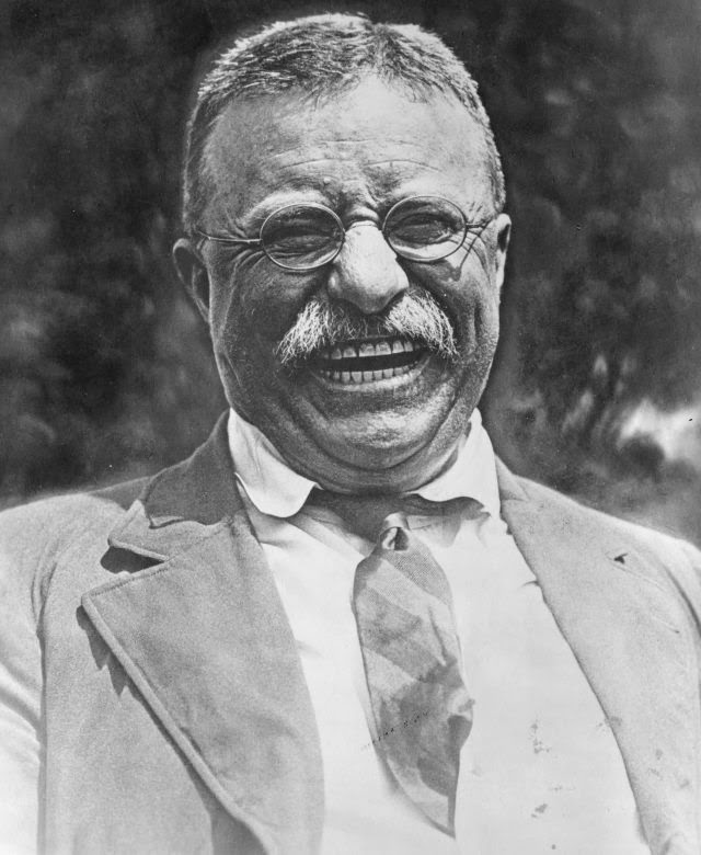 Teddy Roosevelt randommusings.filminspector.com
