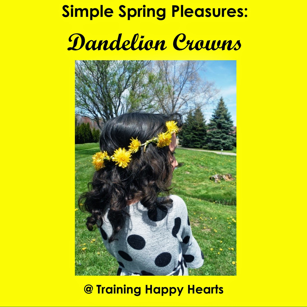 http://traininghappyhearts.blogspot.com/2015/05/what-simple-spring-fun-can-you-enjoy.html