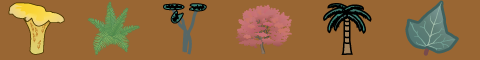 Symbols for fungus, fern, water lilies, red maple, palm tree, ivy leaf.