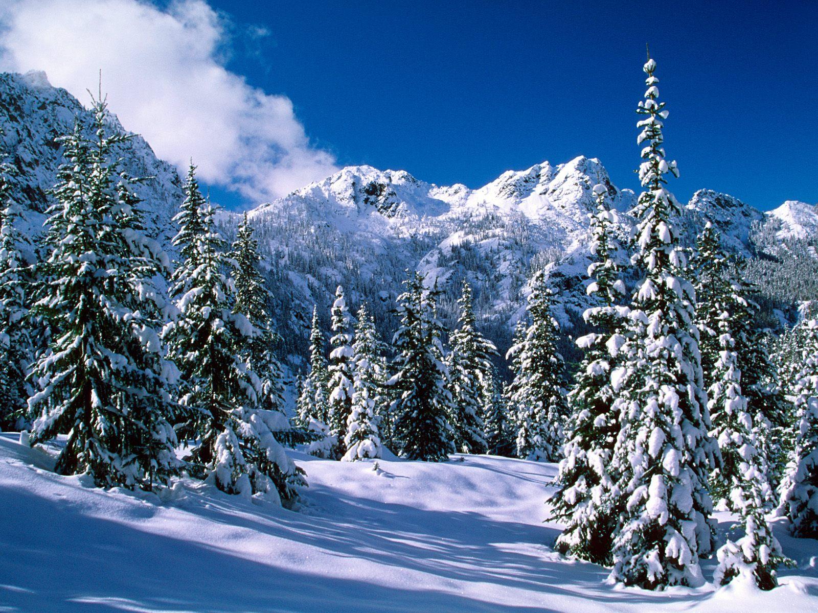 [GRATIS] Weihnachten 3D Live Hintergrund Forum Allgemeines zu  - Hintergrundbilder Winterlandschaften