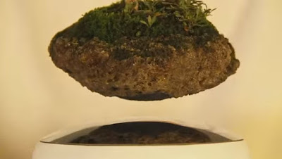"Air Bonsai is comprised of two components: the top half ""little star"" and bottom half ""energy base""."