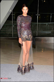 Adriana Lima Pictures at 2013 CFDA Fashion Awards  0001