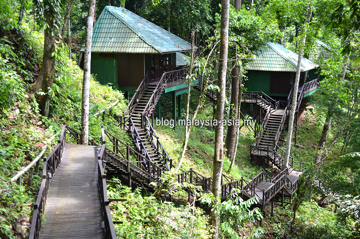 ecotourism in malaysia How malaysia's golden goose of ecotourism, sabah, keeps the visitors coming the east malaysian state has fostered an economy that's as robust as its many natural wonders, from lake toba to mount kinabalu.