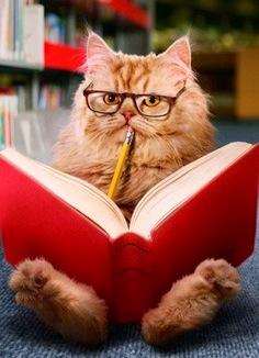 Choose from my Bookshelf here