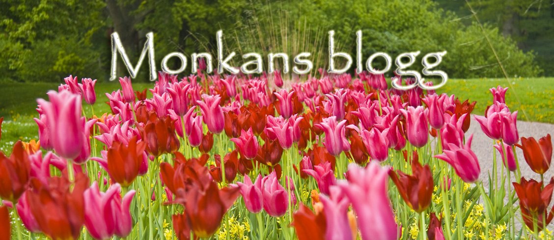 Monkans Blogg