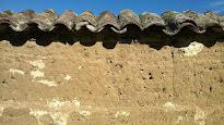 Restauration des murs en pisé le 10 juin à Bessenay