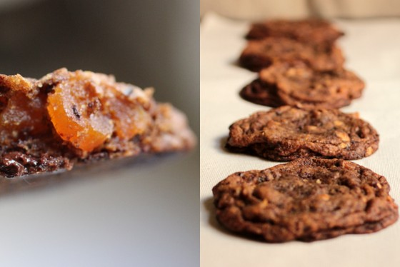 Mocha Chocolate Apricot Cookies | Vintage Kitchen Notes