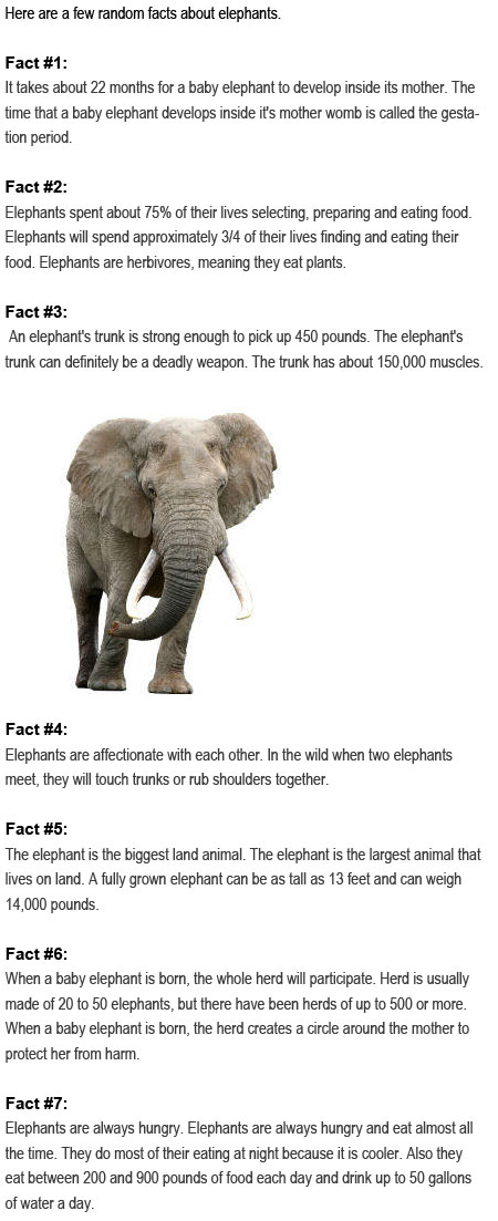 Facts about elephants for kids