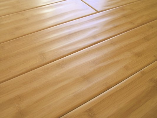 Bamboo Flooring4