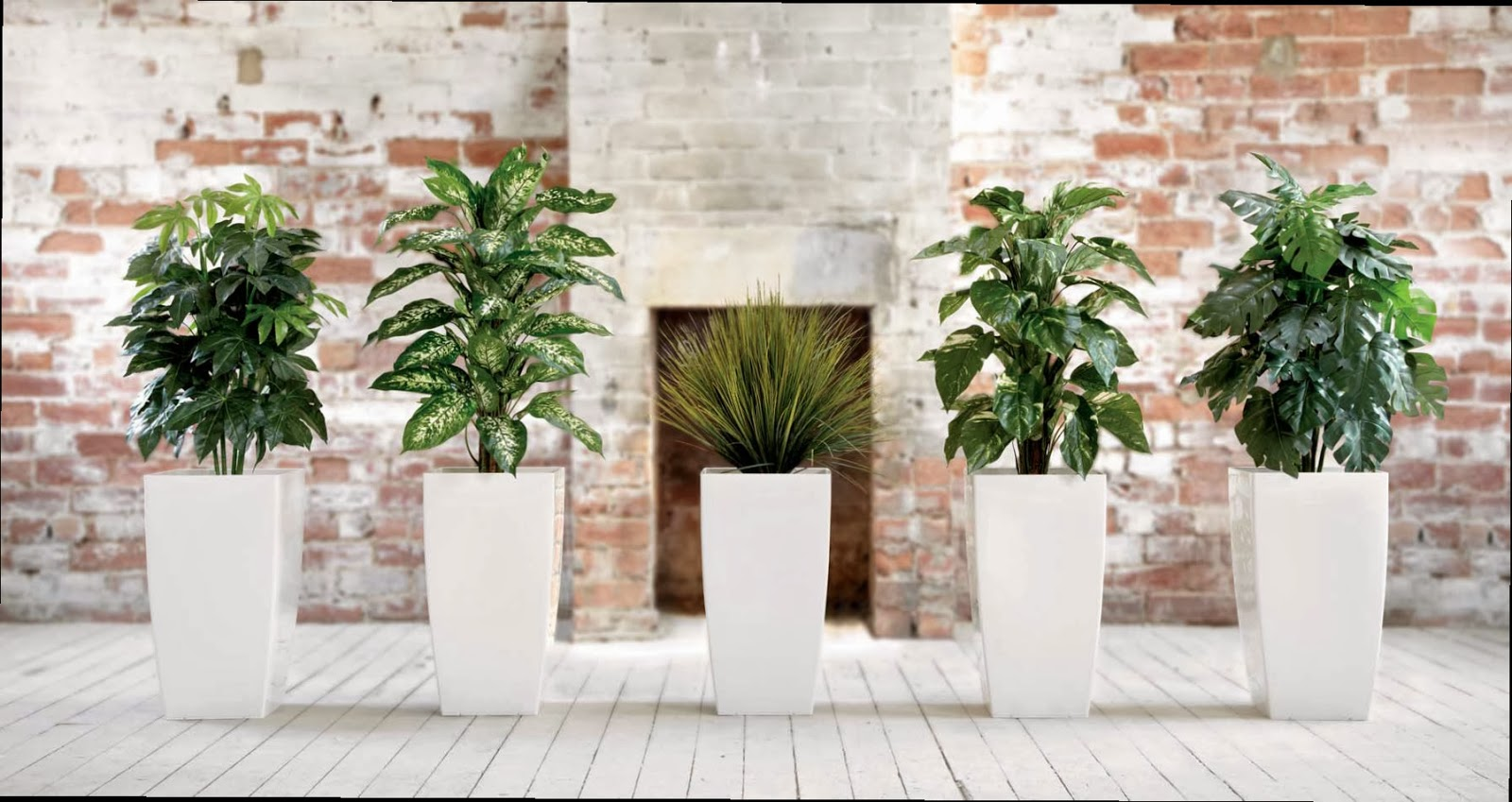 office furniture box replica plants