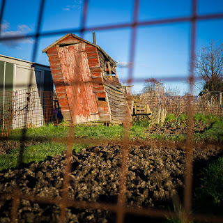 Allotment Grid 1, 2013 ©Graham Dew
