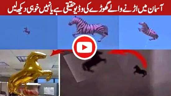 Reality of Flying Horse Seen in Makkah