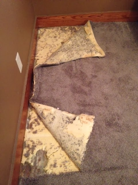 ripping out carpet, carpet, DIY, reno, bedroom redo, carpet pad, patching wood floors