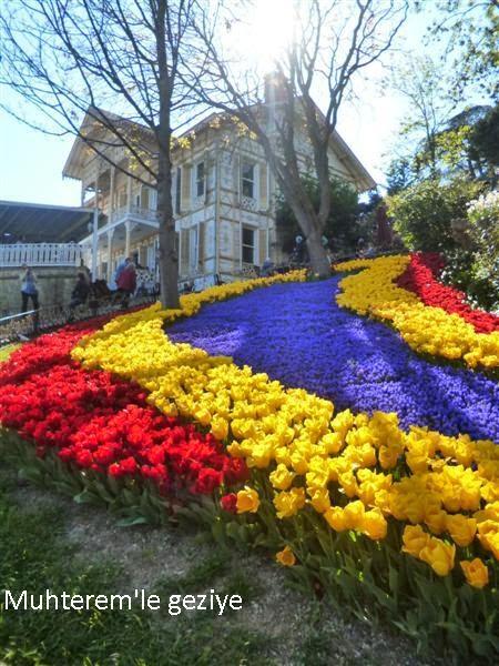 Emirgan tulip time