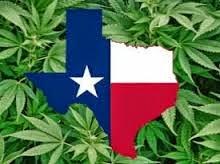 legalização da maconha medicinal