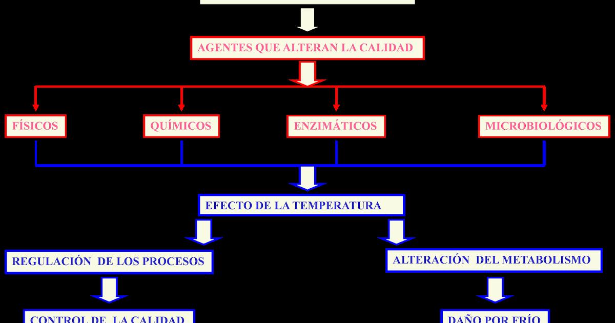 soluciones postcosecha principales causas del deterioro diagrama de venn ejercicios diagrama de venn ejercicios diagrama de venn ejercicios diagrama de venn ejercicios