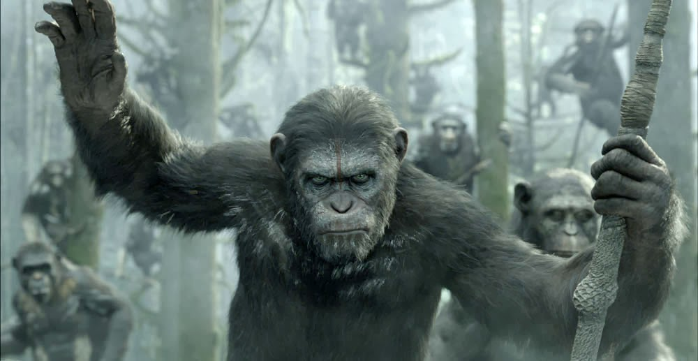 WATCH DAWN OF THE PLANET OF Dawn of the Planet of the Apes 2014 Free Movie Watch Online 1000x517 Movie-index.com
