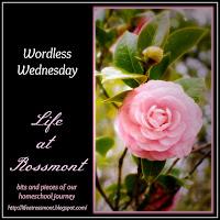 http://lifeatrossmont.blogspot.com/2015/09/wordless-wednesday-september-16-with.html