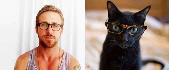 Hot Men and their Kitty Counterparts