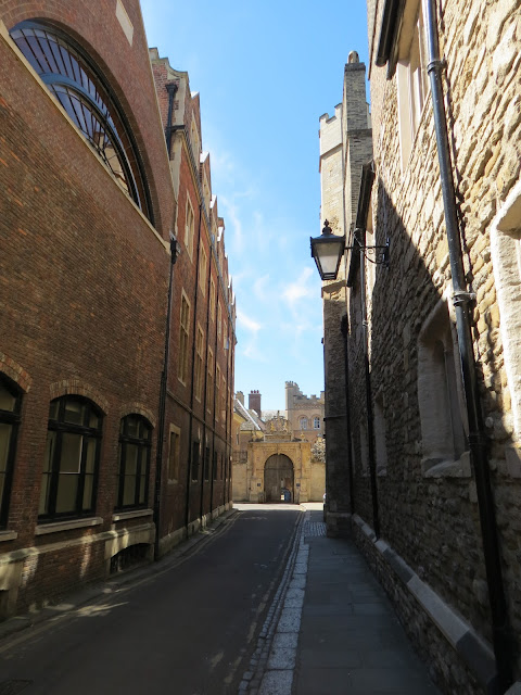 Alley cambridge punting