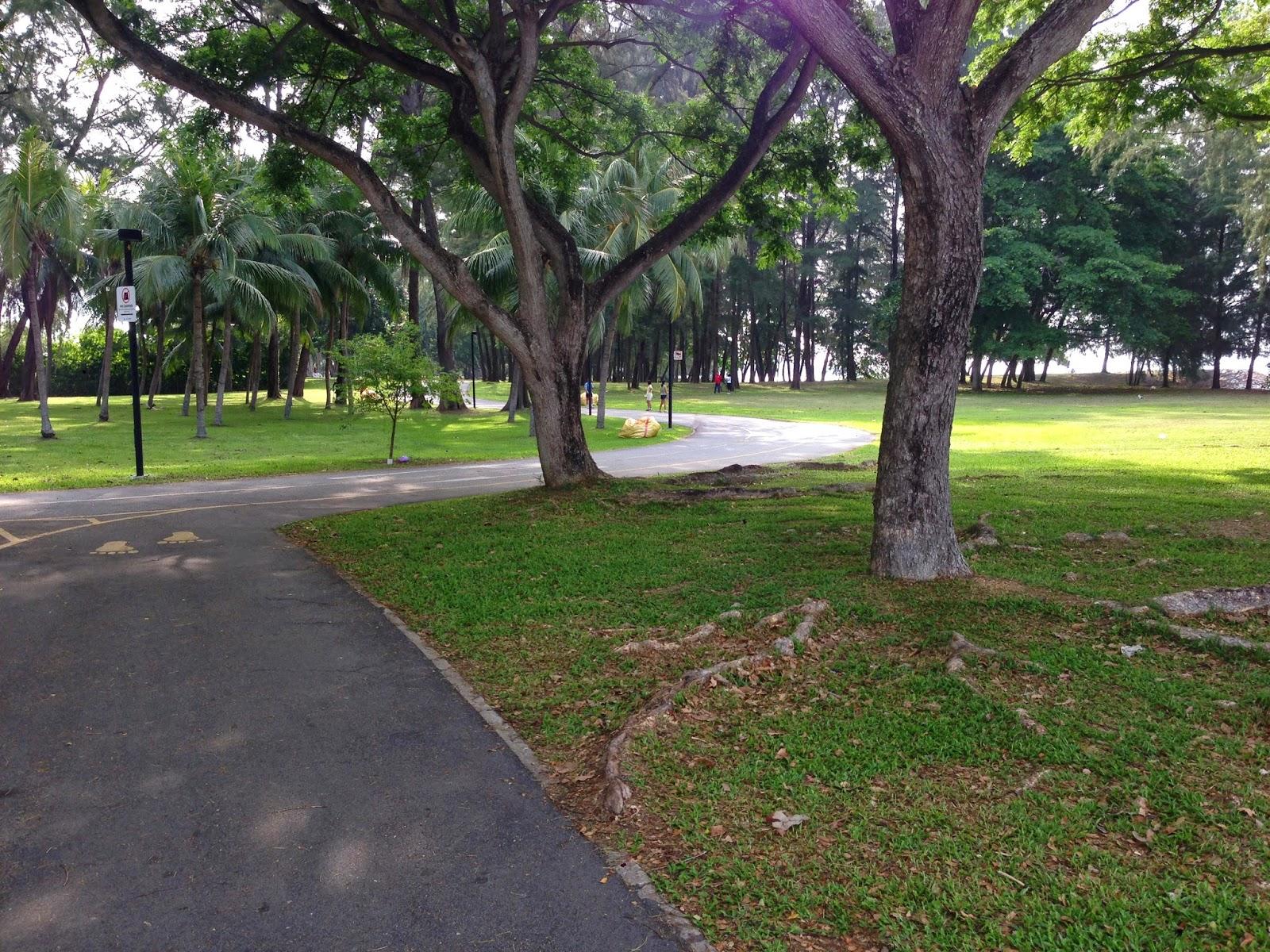 Marina Bay/ Gardens by the Bay - 8km / 11km Loop | Singapore Run. Can.