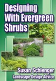 Desiging With Evergreen Shrubs