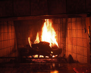 Fire in Fireplace, © B. Radisavljevic