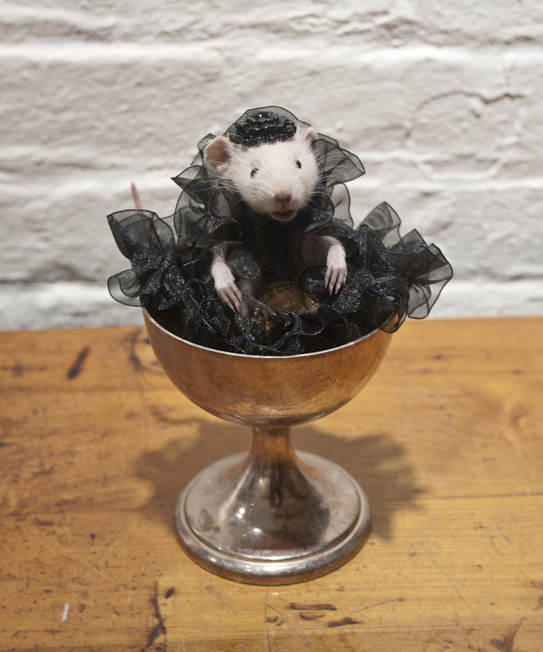 Four slots have just opened up for tonight's anthropomorphic mouse taxidermy ...