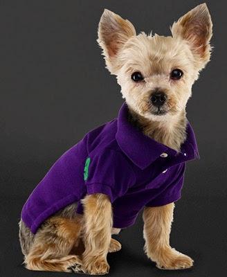 polo para perros Ralph Lauren