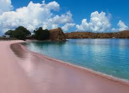 Pink Beack of Komodo Island
