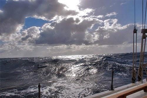 Vittorio Malingri - Ocean Experience