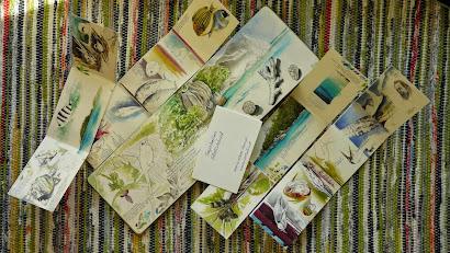 Seychelle's Sketchbooks