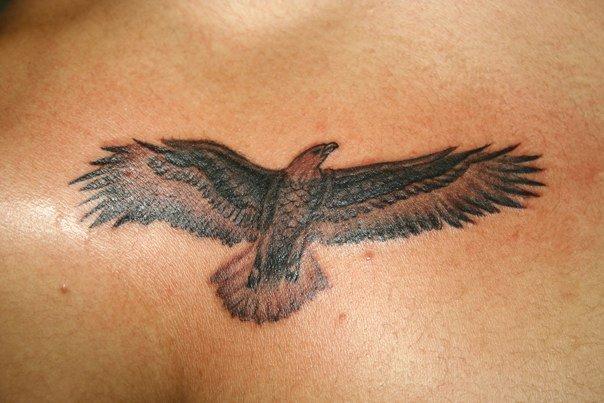 Sin city tattoos february 2011 for Small eagle tattoo