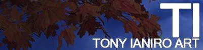 Tony Ianiro Art