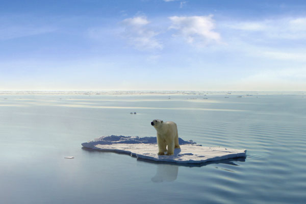 North Pole Polar Melting Polar Bear Antartica Climate Action Climate Change Asia Philippines What Can We Do Simple Ways Philippines Feature Write-Up Global Warming Greenhouse Gases Gas Methane Carbon Dioxide Warm Temperature