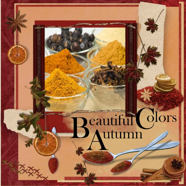 Nov.2016 , Colorful spices 1