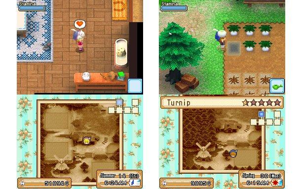 Harvest Moon Grand Bazaar Gameplay
