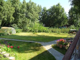 Ухоженный газон очень украшает придомовую территорию