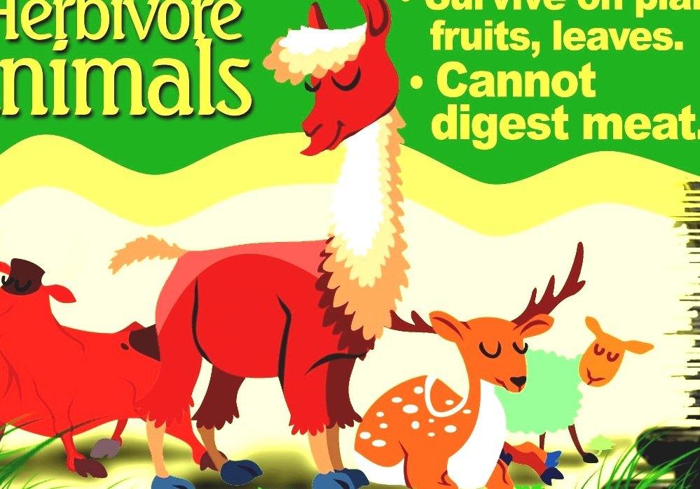 list of herbivorous animals - forest herbivores