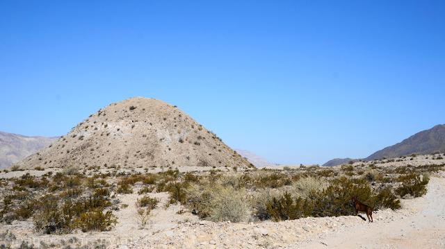 Ascenso cerro Blanco, trekking San Juan, zonda