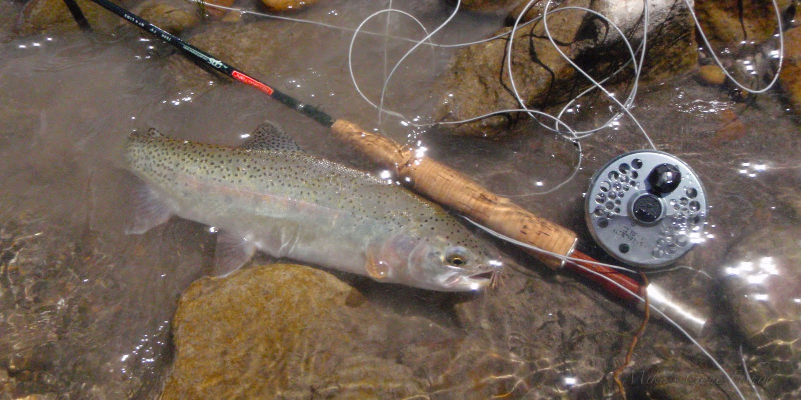 Mike 39 s gone fishin 39 again the upper ruby for Ruby river fishing report